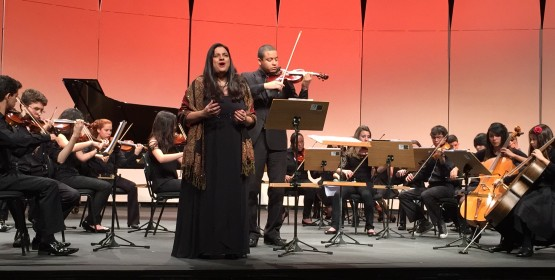 'Um brinde à ópera!' é atração gratuita no Salão Villa-Lobos (06/12)